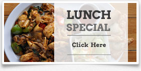 Lunch Specials - Taste of Thai Delmar